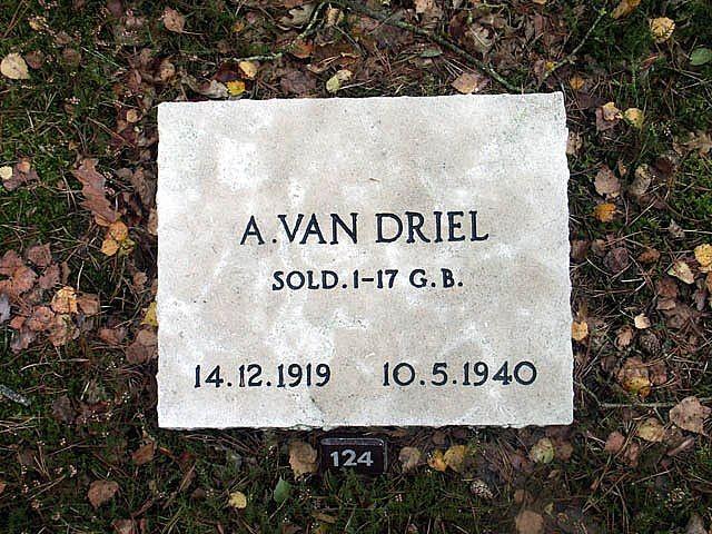 Arie van Driel